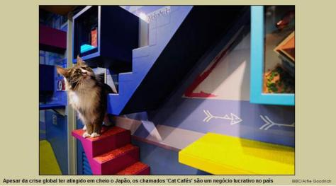 cat-cafe-01